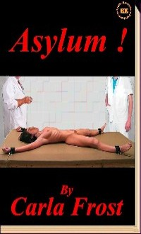 cover design for the book entitled Asylum!