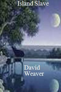 cover design for the book entitled Island Slave