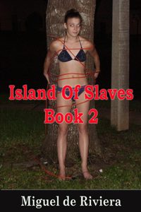 cover design for the book entitled Island Of Slaves 2