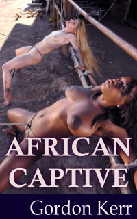 cover design for the book entitled African Captive