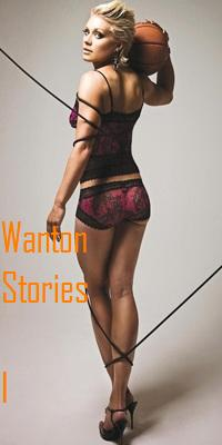 cover design for the book entitled Wanton Stories I