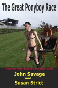 cover design for the book entitled The Great Ponyboy Race