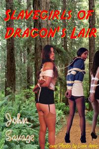 cover design for the book entitled Slavegirls Of Dragon