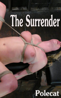 cover design for the book entitled The Surrender