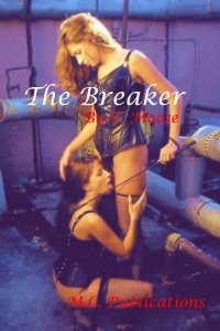 cover design for the book entitled The Breaker