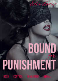 cover design for the book entitled Bound For Punishment