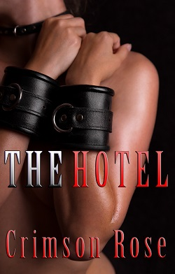 cover design for the book entitled The Hotel