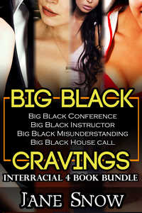 cover design for the book entitled Big Black Cravings (Interracial Black Males / White Females Bundle)