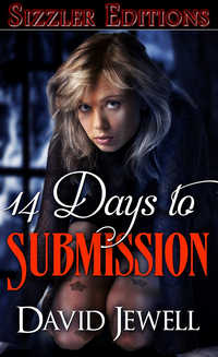 cover design for the book entitled 14 Days to Submission