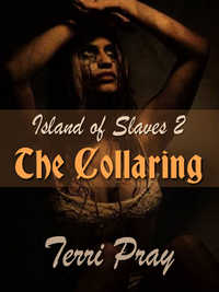 cover design for the book entitled The Collaring