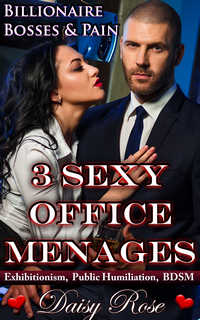 cover design for the book entitled 3 Sexy Office Menages