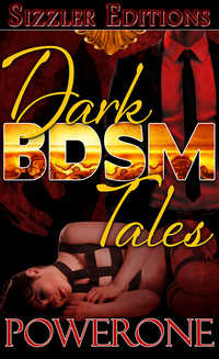 cover design for the book entitled Dark BDSM Tales