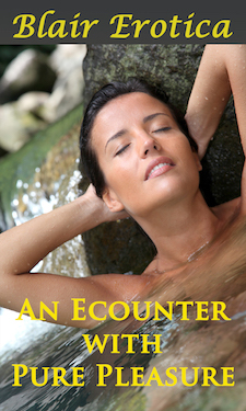 cover design for the book entitled An Encounter with Pure Pleasure