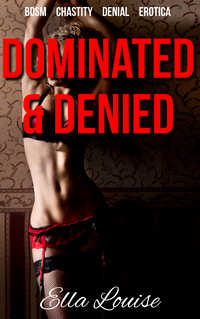 cover design for the book entitled Dominated & Denied
