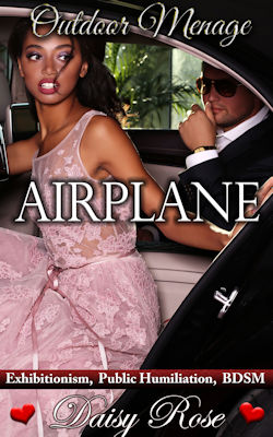 cover design for the book entitled Airplane
