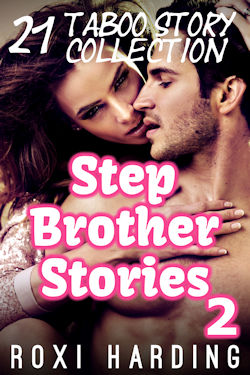 cover design for the book entitled Stepbrother Stories 2