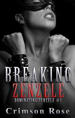 cover design for the book entitled Breaking Zenzele