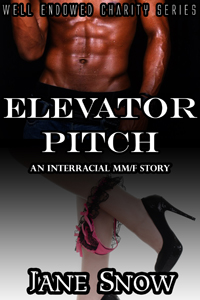 cover design for the book entitled Elevator Pitch (Interacial Black MM/White F Erotica)