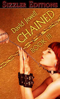 cover design for the book entitled Chained! 3