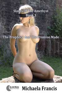 cover design for the book entitled The Prophecy And The Promise Made