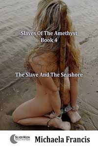 cover design for the book entitled The Slave And The Seashore