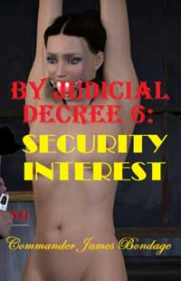 cover design for the book entitled By Judicial Decree 6: Security Interest