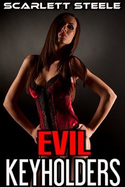 cover design for the book entitled Evil Keyholders