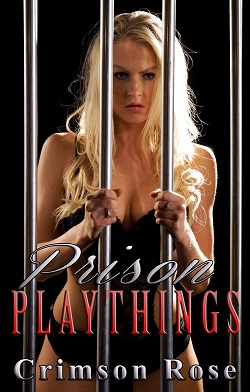 cover design for the book entitled Prison Playthings