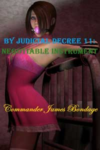 cover design for the book entitled By Judicial Decree 11: Negotiable Instrument