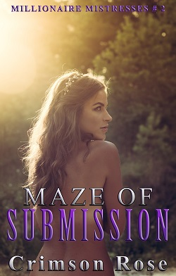 cover design for the book entitled Maze of Submission