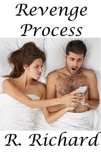 cover design for the book entitled Revenge Process