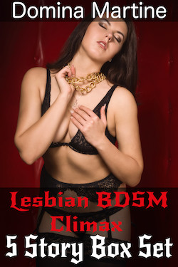 cover design for the book entitled Lesbian BDSM Climax 5 Story Box Set
