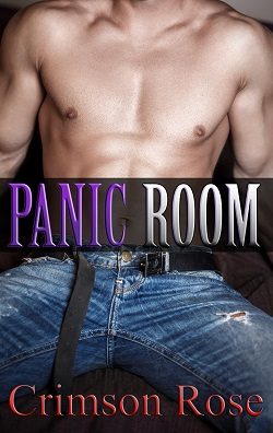 cover design for the book entitled Panic Room