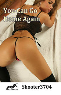 cover design for the book entitled You Can Go Home Again