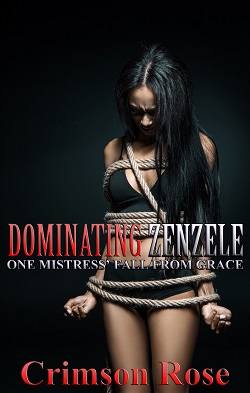 cover design for the book entitled Dominating Zenzele