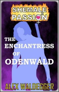 cover design for the book entitled The Enchantress of Odenwald