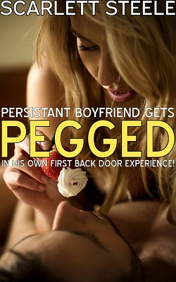 cover design for the book entitled Persistent Boyfriend Gets Pegged In His Own First Back Door Experience!