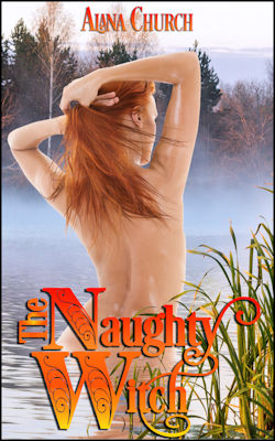 cover design for the book entitled The Naughty Witch