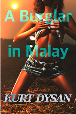cover design for the book entitled A Burglar In Malay