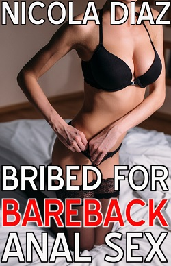cover design for the book entitled Bribed For Bareback Anal Sex