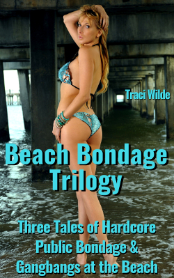 cover design for the book entitled Beach Bondage Trilogy