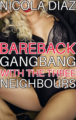cover design for the book entitled Bareback Gangbang With The Three Neighbours
