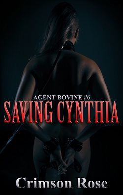 cover design for the book entitled Saving Cynthia