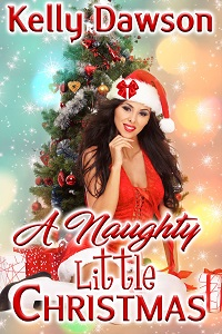 cover design for the book entitled A Naughty Little Christmas