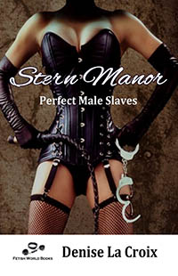 cover design for the book entitled Stern Manor