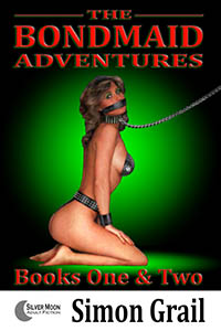 cover design for the book entitled The Bondmaid Adventures - Volume 1