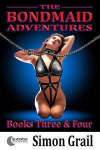 cover design for the book entitled The Bondmaid Adventures - Volume 2