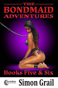 cover design for the book entitled The Bondmaid Adventures - Volume 3