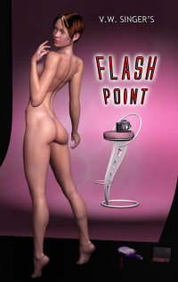 cover design for the book entitled Flash Point
