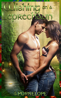 cover design for the book entitled Wishing On A Leprechaun